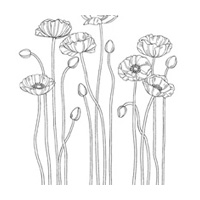 Pleasant Poppies Clear-Mount Stamp Set