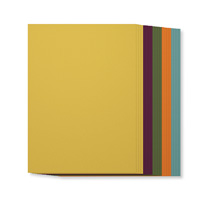 2014-2016 In Color A4 Cardstock