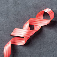 "Watermelon Wonder 1"" Stitched Satin Ribbon"