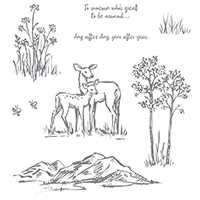 In The Meadow Wood-Mount Stamp Set