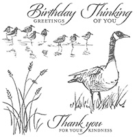 Wetlands Clear Stamp Set
