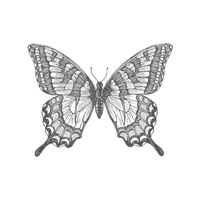 Swallowtail Wood-Mount Stamp