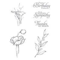 Simply Sketched Clear-mount Stamp Set