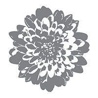 Definitely Dahlia Clear-Mount Background Stamp