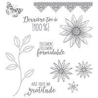 Tant De Mercis Photopolymer Stamp Set (French)